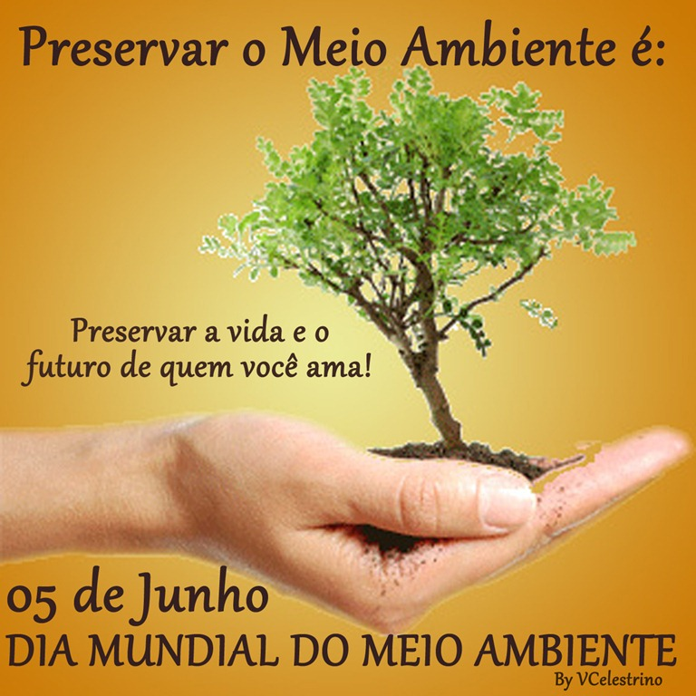Excepcional Dia Mundial do Meio Ambiente | CO22